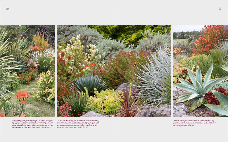 Succulent Design Ideas Archives Succulents And Succulent Garden