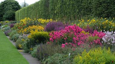 Frontera de herbáceas en el Jardín Botánico de Edimburgo