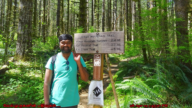 Kings Mountain summit Hike