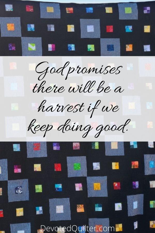 God promises there will be a harvest if we keep doing good | DevotedQuilter.com