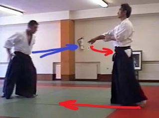 aikido kotegaeshi ACAE