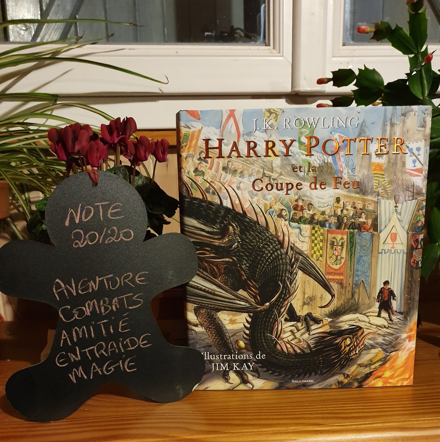 Harry Potter Illustree Tome 4 Harry Potter Et La Coupe
