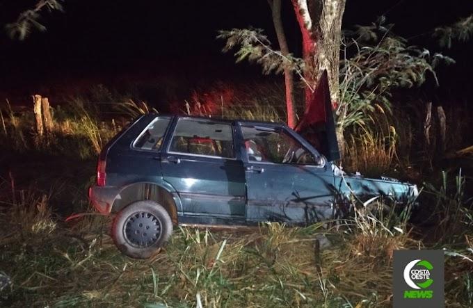 Veículo colide violentamente contra uma árvore na BR 488, em Diamante do Oeste