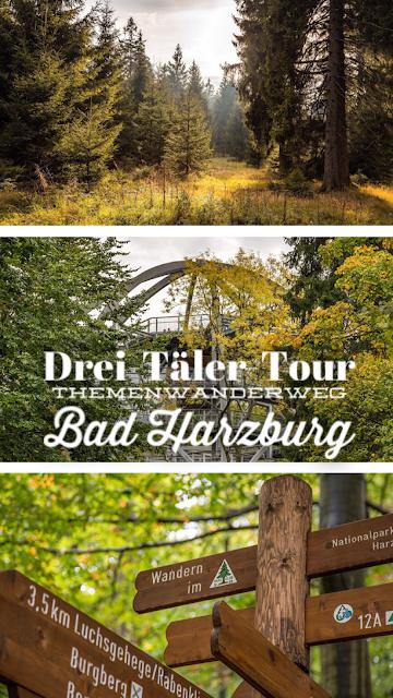 Drei-Täler-Tour  Themenwanderweg Bad Harzburg  Wandern im Harz  Baumwipfelpfad - Radauwasserfall - Eckertalsperre 21