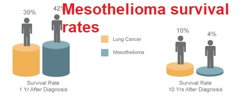 The Different Mesothelioma Survival Rates