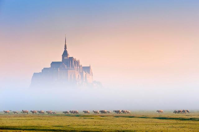 Le Mont Saint-Michel là nguồn cảm hứng để các nhà làm phim Disney tạo nên vương quốc trong bộ phim Tangled (Công chúa tóc mây). Bối cảnh chính trong phim là Cung điện hoàng gia, nơi nàng công tóc mây sinh ra nhưng bị bắt cóc và trải qua cuộc phiêu lưu dài. Tòa lâu đài nguy nga nằm giữa hòn đảo Mont Sait – Michel ngoài đời thực với nhiều tòa tháp, tu viện lộng lẫy được xây dựng từ thế kỷ 16 và là địa điểm thu hút rất nhiều khách du lịch hàng năm khi đến Pháp vì độ nổi tiếng của nó. Nơi đây cũng đã được UNESCO công nhận là di sản thế giới.