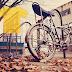 Odzież rowerowa na jesień/zimę - koszulki, bluzy, kurtki