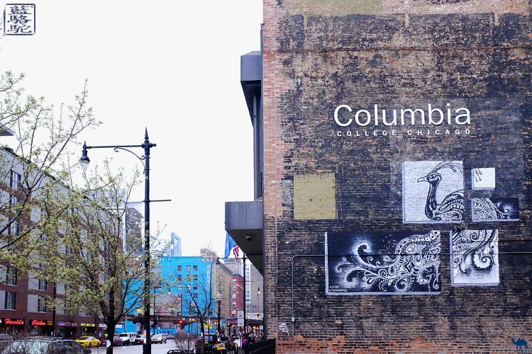 Le Chameau Bleu - Séjour à Chicago aux USA - Les rues de Chicago