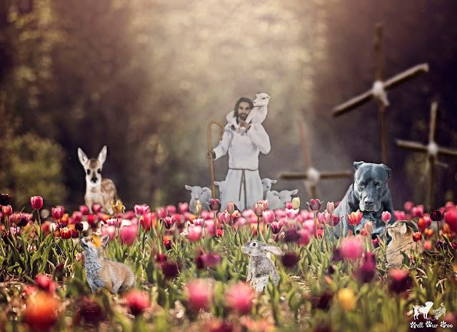 Easter 2020 Matt & Matilda (©Jenny - Bell Fur Zoo)