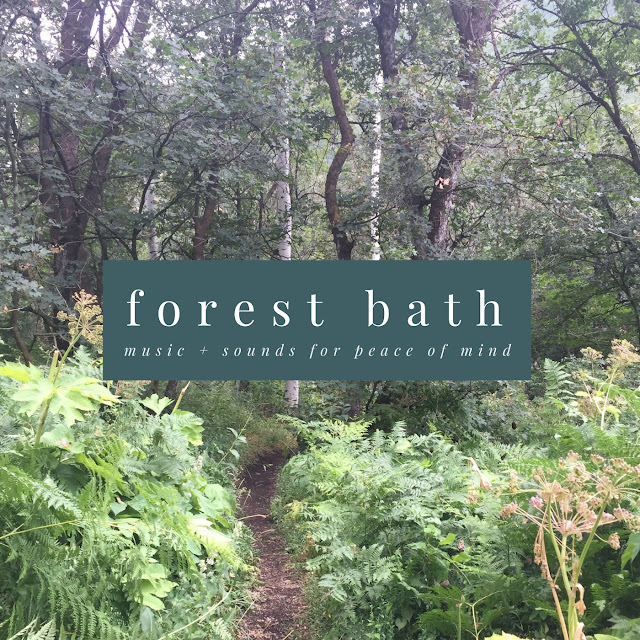 Forest Bath - Music & Sounds for Peace of Mind - Playlist // www.thejoyblog.net