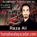 http://www.humaliwalayazadar.com/2016/09/raza-ali-nohay-2017.html