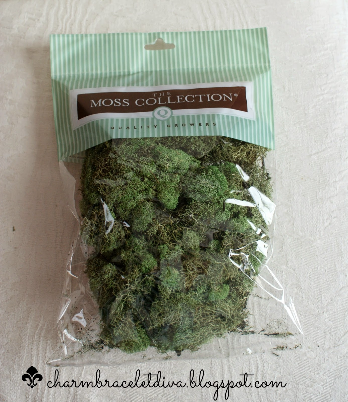 bag of crafting moss