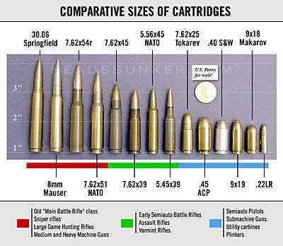 Comparative Size of Most Common Ammo Cartridges