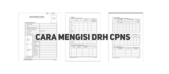 Penjelasan Cara Mengisi Daftar Riwayat Hidup (DRH) CPNS
