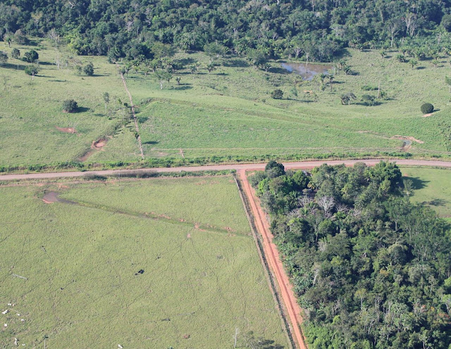 Early human landscape modifications discovered in Amazonia