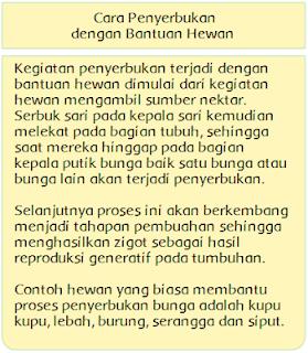 Kunci Jawaban Buku Tematik Kelas 6 Tema 1 Halaman 6 Azkime Id