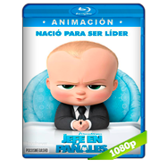 Un jefe en pañales (2017) BRRip 1080p Audio Dual Latino-Ingles