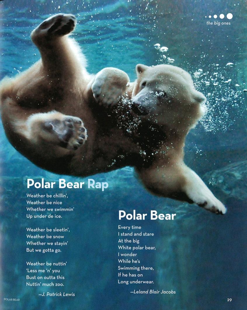 hyde park class animal poems