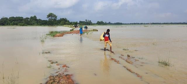 त्रिमुहान में अधवारा की 'धौंस' नदी कर रहा कटाव