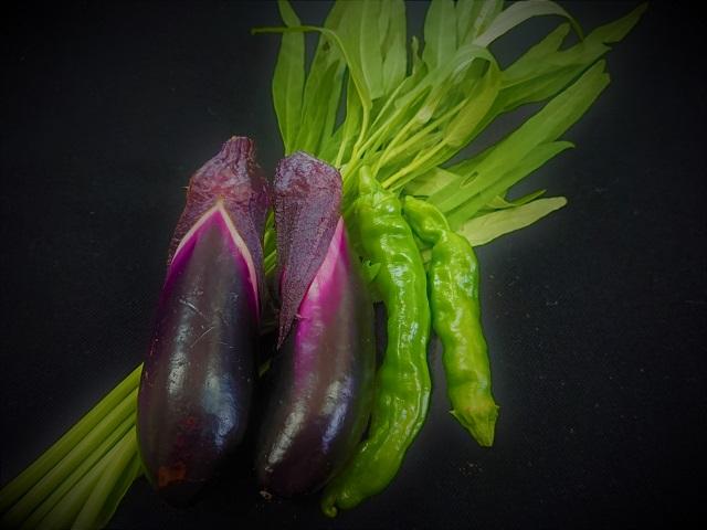 家庭菜園 ナス トウガラシ 空心菜