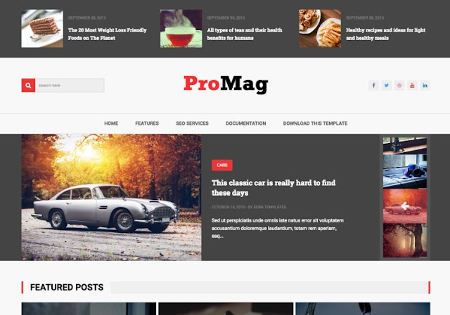 ProMag Blogger Template