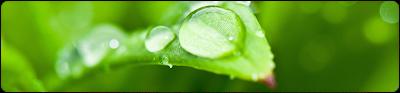 Como funcionam os hidratantes por oclusão?