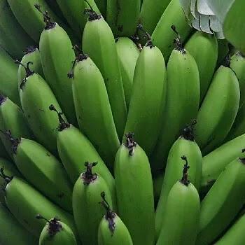 कच्ची केळे, Unripe Banana fruits name in Marathi
