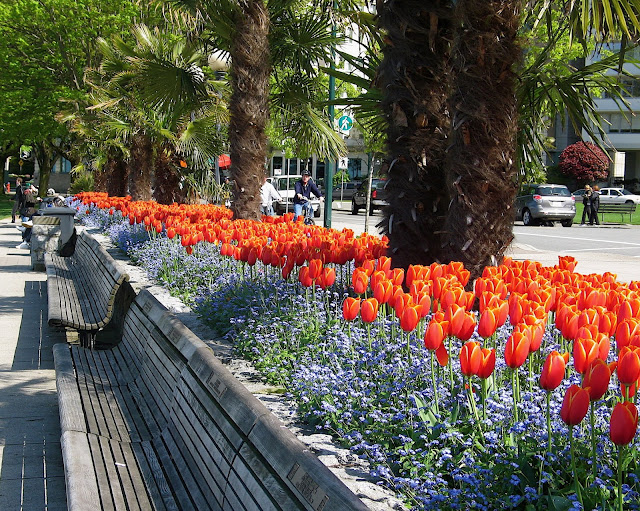 Postcard from Vancouver BC | Springtime Past