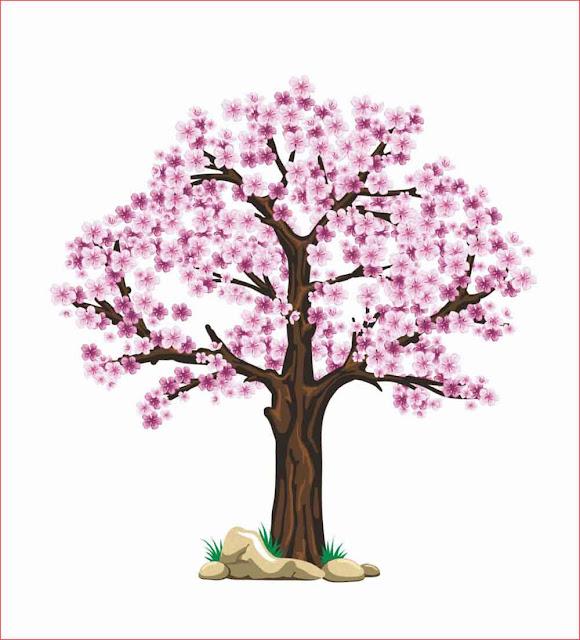 gambar-bunga-sakura