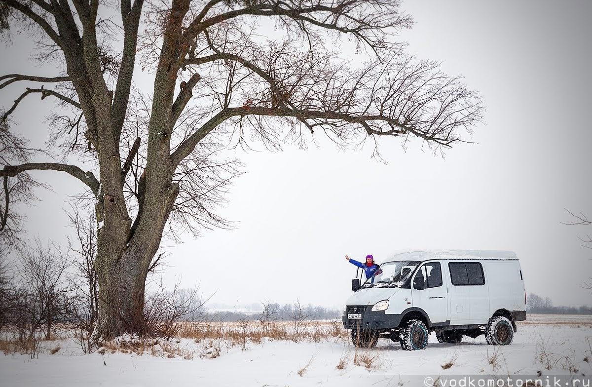 У одинокого дерева в поле