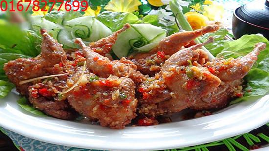 Buôn chim cút, chim cút thịt, chim chút chiên tại Miền Bắc - 01678277699