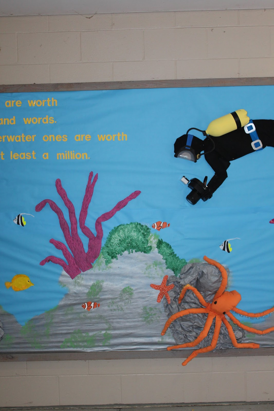 School Bulletin Boards Underwater Tropical Ocean Scuba