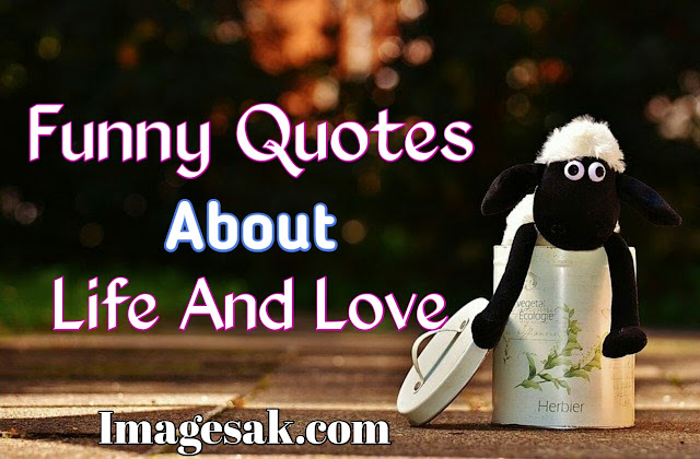 Funny Quotes About Life And Love