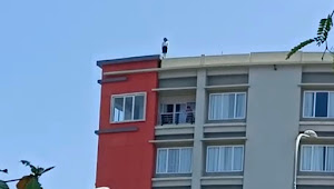 Aksi Coba Bunuh Diri di Hotel Sutanraja Minsel Terekam Video