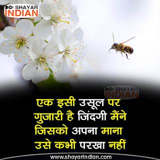 Apnapan Status in Hindi - Usul Zindagi Ke