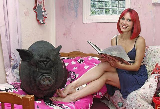 Ihh! Perempuan Cantik Ini Jatuh Cinta Pada Seekor Babi