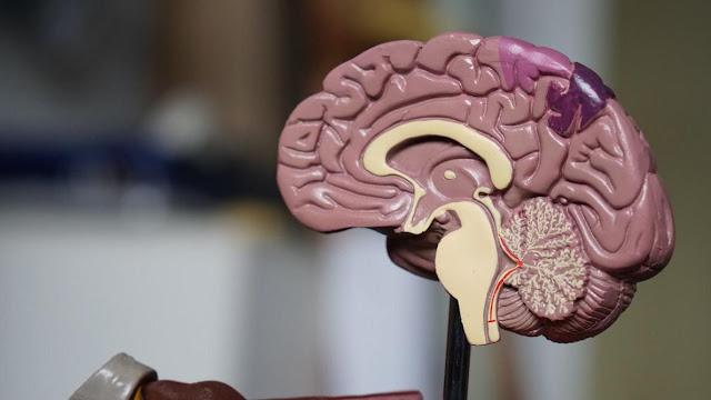 В Америці вчені знайшли метод лікування розсіяного склерозу, який раніше вважався невиліковним
