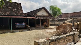 Warga Kampung Miliarder Tuban Tetap Bertani Meski Punya Banyak Uang