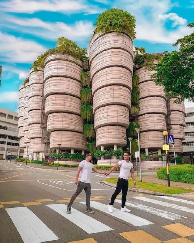 Dimsum basket-shaped building - new virtual living coordinate in Singapore