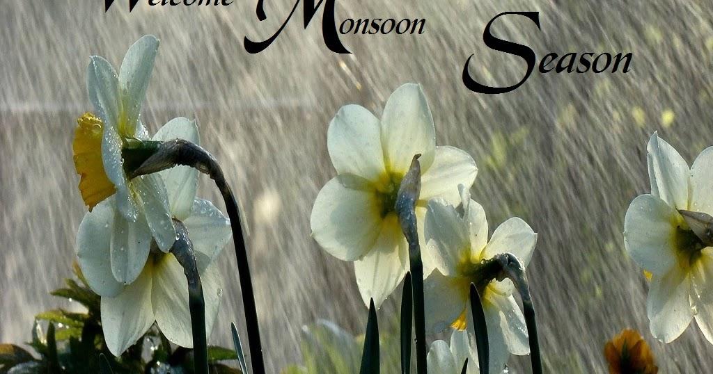 Good Morning Animation Wallpaper Welcome To Monsoon Season Rainfall Photos Festival Chaska