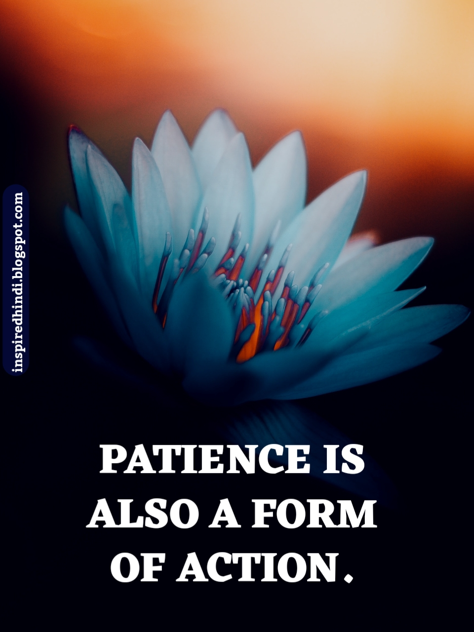 PATIENCE IS ALSO A FORM OF ACTION.