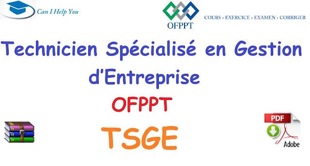 tous cours TSGE ( PDF جميع دروس) GESTION D'ENTREPRISE