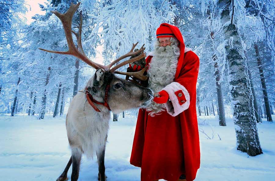 Rudolph La Renna Di Babbo Natale.Nonno Franco A Stoccolma La Storia Delle Renne Di Babbo Natale