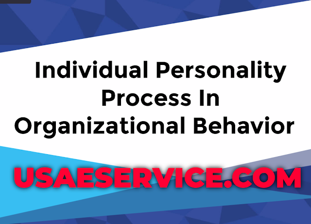 Individual Processes Personality Theory In Organizational Behavior