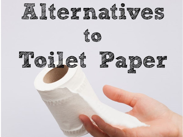 Best Alternatives to Toilet Paper
