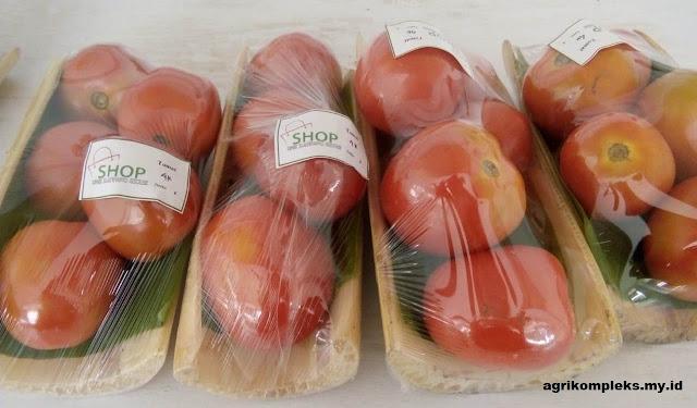 Peluang Usaha Di Bidang Agribisnis Sayuran Packing