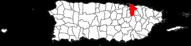 https://en.wikipedia.org/wiki/Municipalities_of_Puerto_Rico