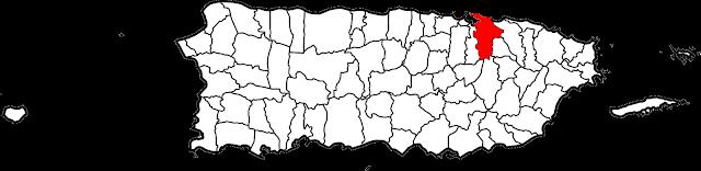 https://en.wikipedia.org/wiki/Municipalities_of_Puerto_Rico