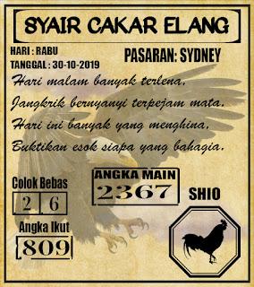 SYAIR SYDNEY 30-10-201
