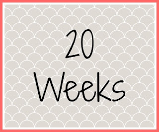 Twin Pregnancy Diary - 20 Weeks